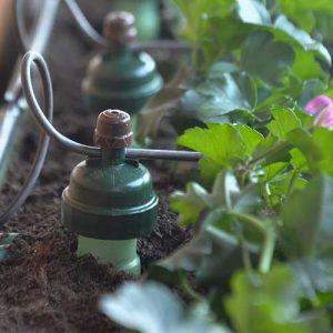 Startseite | Bewässerung TAUTERMANN – Beratung, Montage & Verkauf image 30