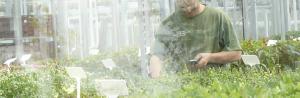 Anfrage | Bewässerung TAUTERMANN – Beratung, Montage & Verkauf image 1